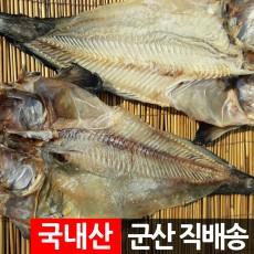 건조 물메기포 곰치 꼼치 물텀벙/국내산 군산항 직송